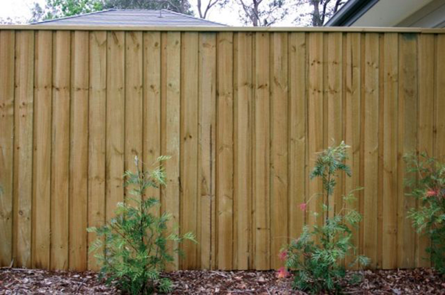 Paling-Fence-(3)